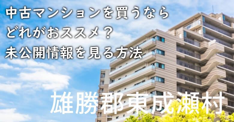 雄勝郡東成瀬村の中古マンションを買うならどれがおススメ?掘り出し物件の探し方や未公開情報を見る方法など