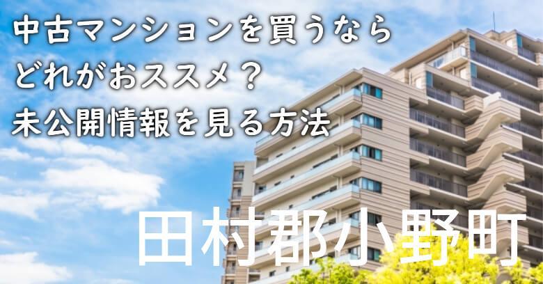 田村郡小野町の中古マンションを買うならどれがおススメ?掘り出し物件の探し方や未公開情報を見る方法など