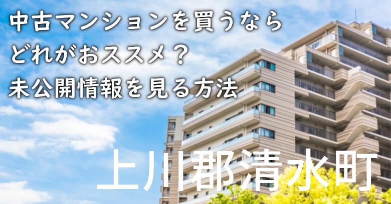 上川郡清水町の中古マンションを買うならどれがおススメ?掘り出し物件の探し方や未公開情報を見る方法など