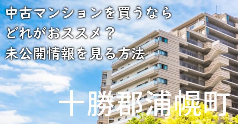 十勝郡浦幌町の中古マンションを買うならどれがおススメ?掘り出し物件の探し方や未公開情報を見る方法など