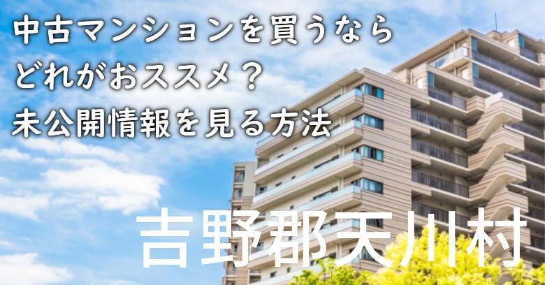 吉野郡天川村の中古マンションを買うならどれがおススメ?掘り出し物件の探し方や未公開情報を見る方法など