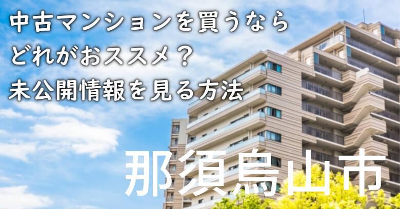 那須烏山市の中古マンションを買うならどれがおススメ?掘り出し物件の探し方や未公開情報を見る方法など