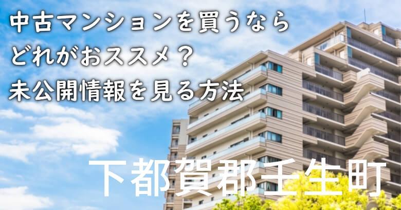 下都賀郡壬生町の中古マンションを買うならどれがおススメ?掘り出し物件の探し方や未公開情報を見る方法など