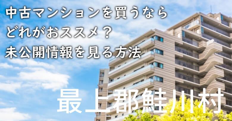 最上郡鮭川村の中古マンションを買うならどれがおススメ?掘り出し物件の探し方や未公開情報を見る方法など
